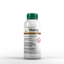 Match 050 EC 200 cc