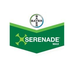 Serenade Max 15,67 WP 250 gr