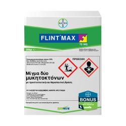 Flint Max 75 WG 200gr