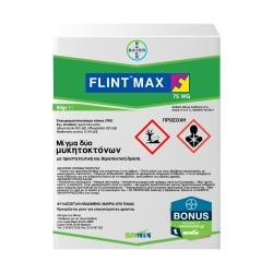 FLINT MAX 75 WG 60gr