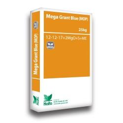 Haifa Mega Grand Blue (M) 12-12-17+2mgo+Me 25kg