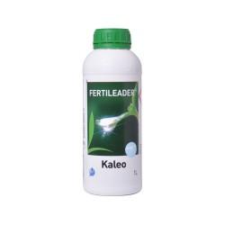 F-Leader Kaleo - 469 1Lt